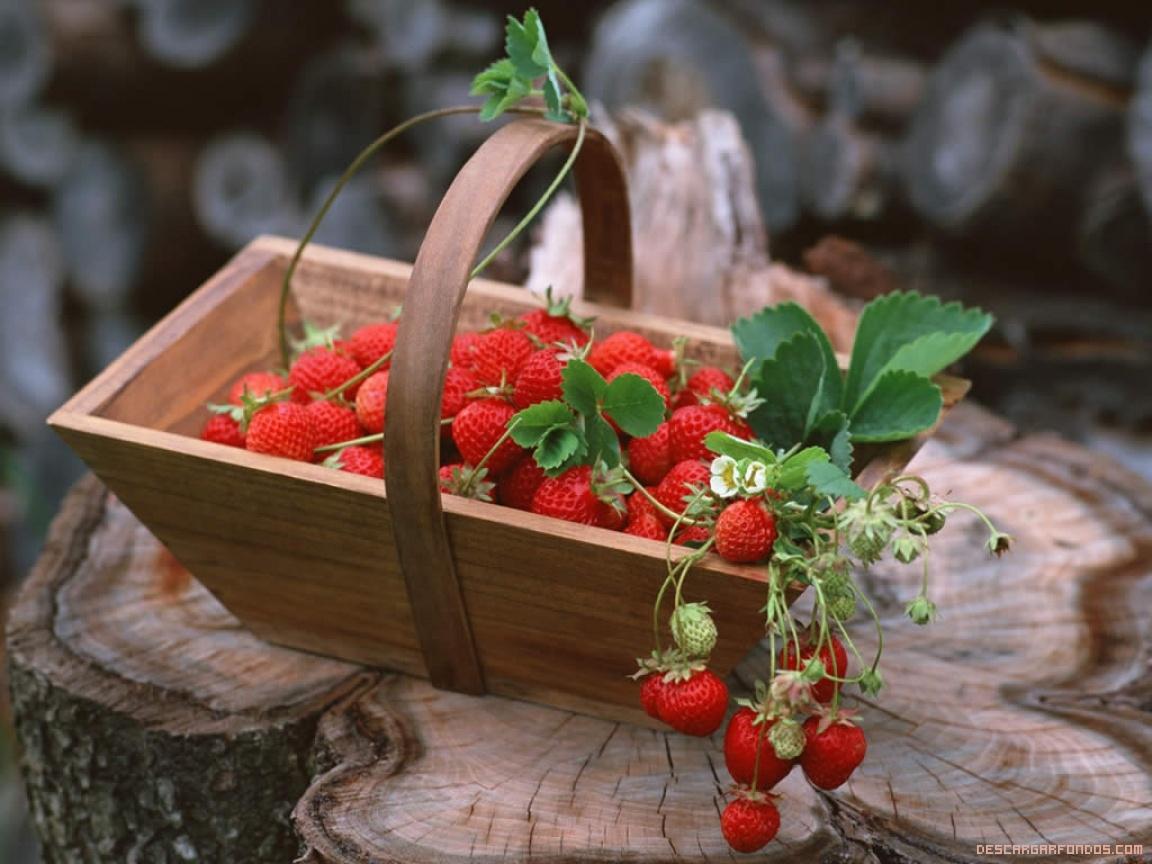 fondo-fresas